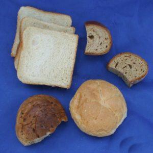 Wachteln Brot füttern?